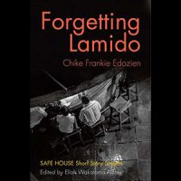 Book - Forgetting Lamido