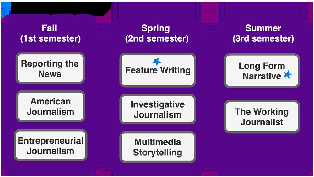 Online Journalism Pathway: 1 Year (Read below for details)