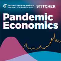 Pandemic Economics (Podcast)