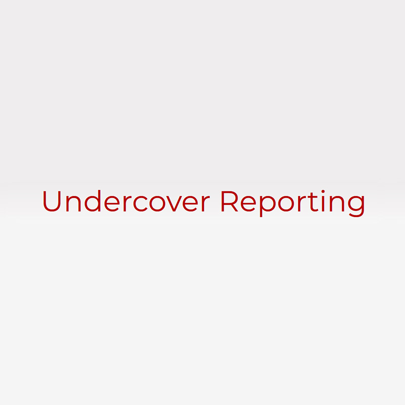 Undercover Reporting