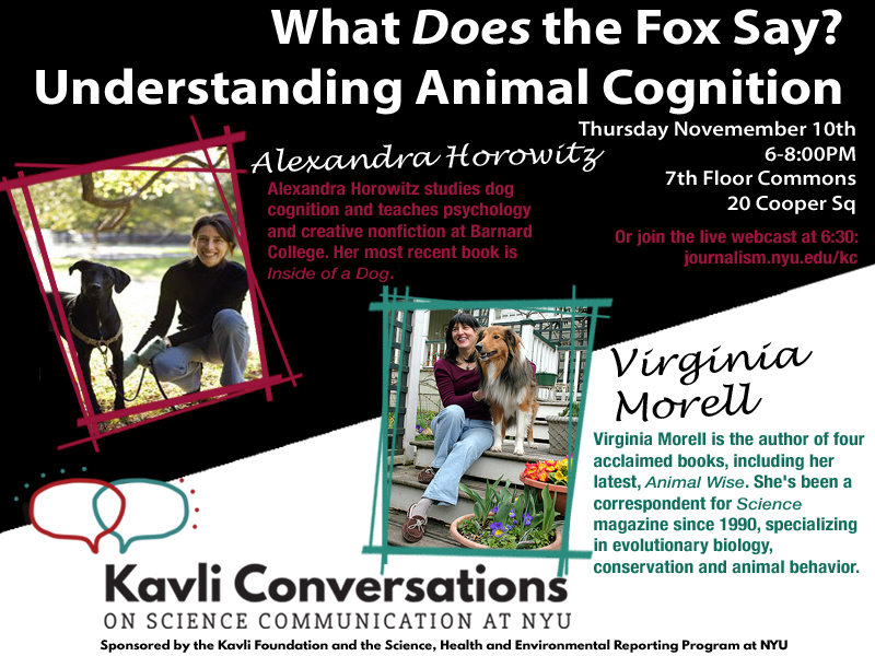 What Does the Fox Say? Understanding Animal Cognition
