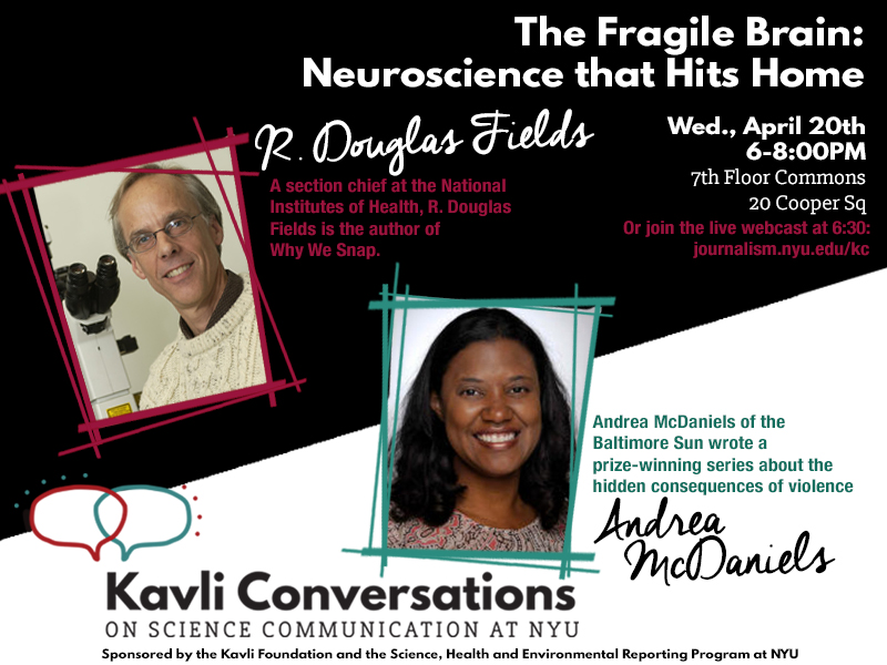 The Fragile Brain: Neuroscience that Hits Home